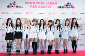 [KCON2018]MOMOLAND レッドカーペット