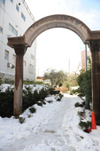 雪(2014/2/9) 小泉八雲記念公園
